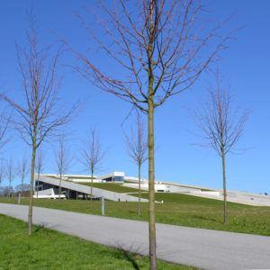Reference - Moesgaard Museum